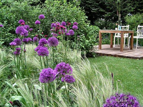 The RSPB/SITA Real Rubbish Garden: Deck