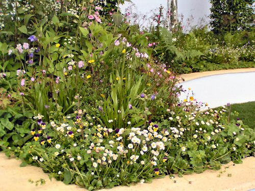 The Trailfinders Recycled Garden: Native Planting Detail