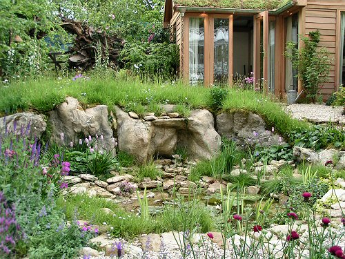 Wildlife Trusts LUSH Garden: Pond