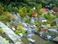 Rock and Water Garden