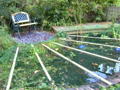 Netting over pond