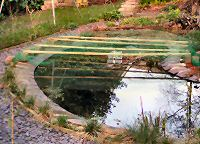 Pond with net