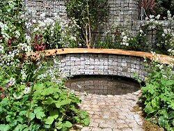 Urban Glade Garden
