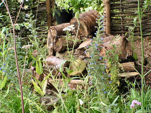 Log-pile from The Stonemarket Path to Sactuary Garden